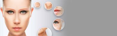 La chirurgie esthétique de la tête et du cou catégories